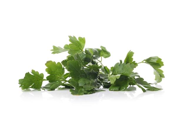 Folhas de salsa em uma superfície branca