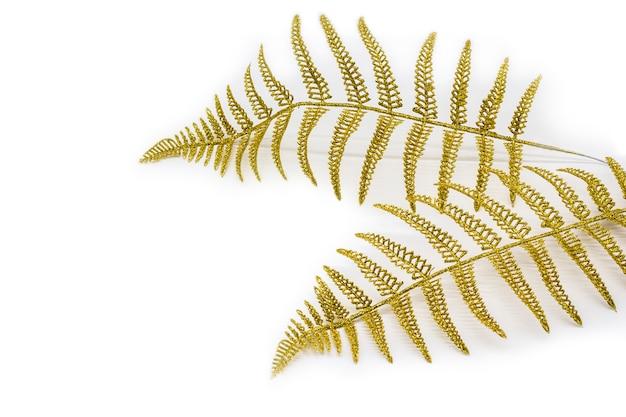 Folhas de samambaia dourada, ramo ornamental de decoração na luz de fundo.
