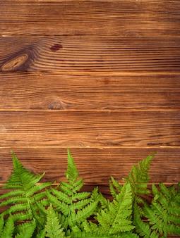Folhas de samambaia verde sobre fundo de madeira de carvalho marrom com espaço de cópia