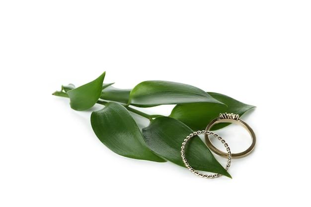 Folhas e anéis dourados isolados no branco