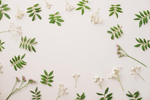 Folhas e flores pequenas