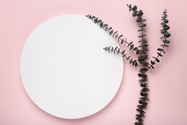 Folhas em fundo rosa com maquete