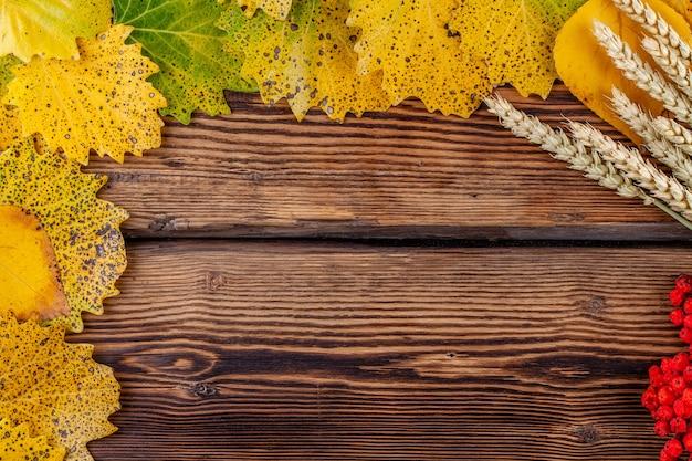 Folhas, espigas de trigo e rowan em fundo de madeira