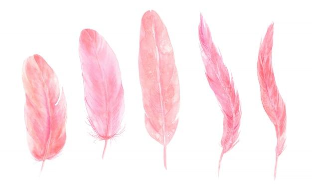 Folhas exóticas tropicais e conjunto de aquarela de penas rosa flamingo
