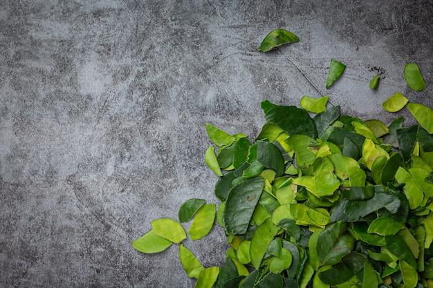 Folhas frescas de bergamota no chão escuro