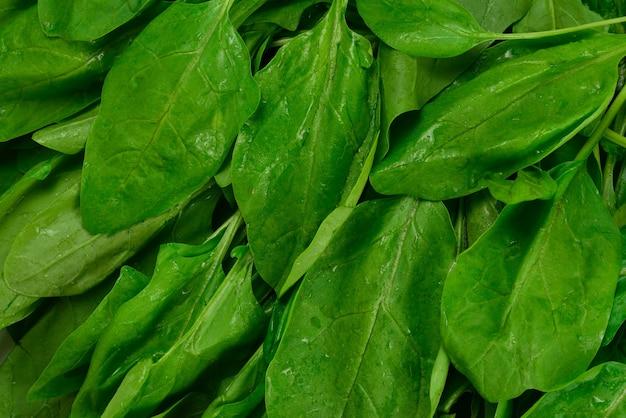 Folhas frescas de espinafre como superfície