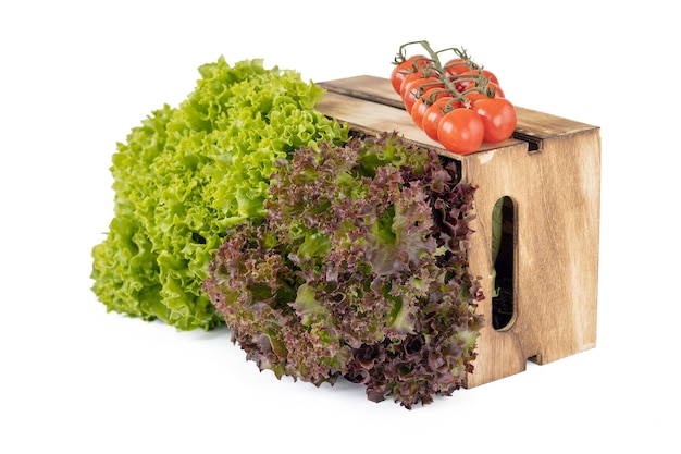 Folhas frescas de salade verdes e vermelhas em uma caixa de madeira e um ramo de tomate cereja isolado no branco