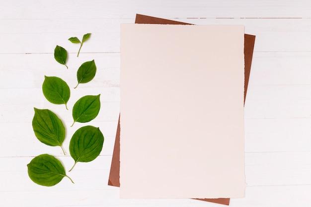 Folhas ordenadas por tamanho com espaço para texto