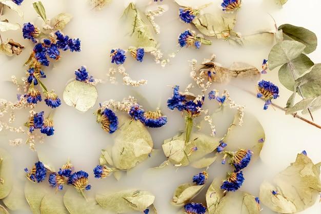 Folhas pálidas e flores azuis escuras na água branca