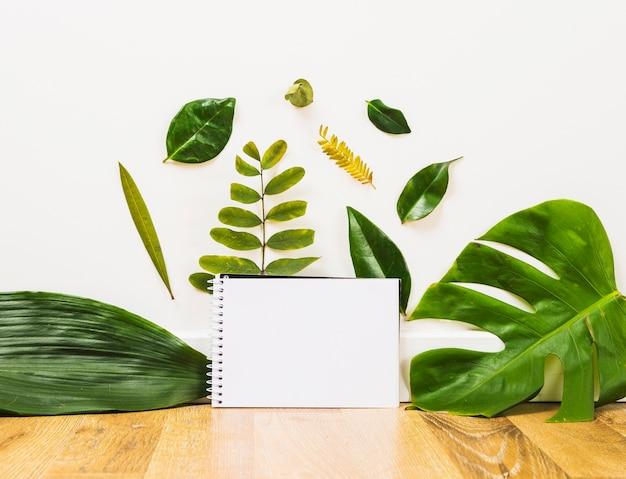 Folhas perto de caderno vazio