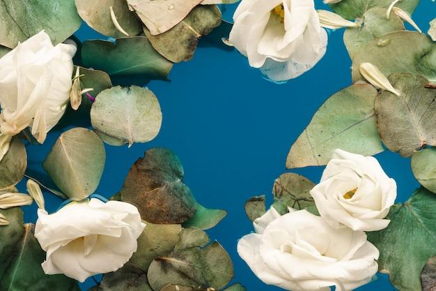 Folhas planas e pétalas na água azul