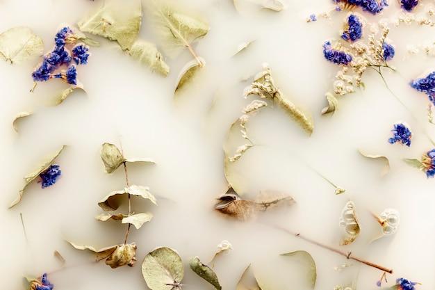 Folhas planas leigos e flores azuis escuras na água branca