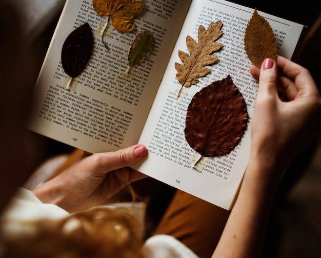 Folhas pressionadas em páginas de livros