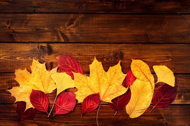 Folhas secas coloridas no fundo de madeira