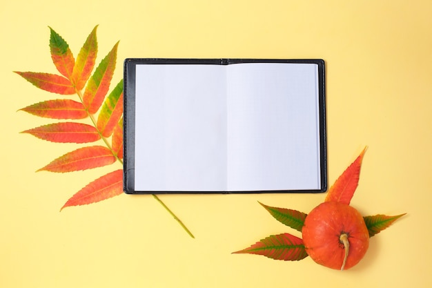 Folhas secas de abóbora e caderno aberto em fundo amarelo