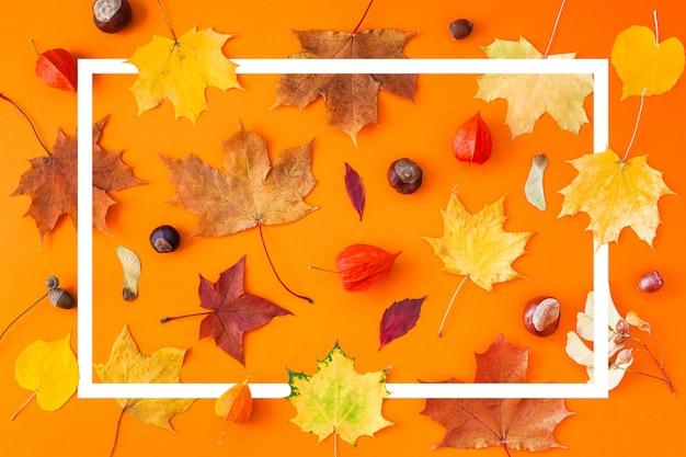 Folhas secas de outono como um modelo de quadro