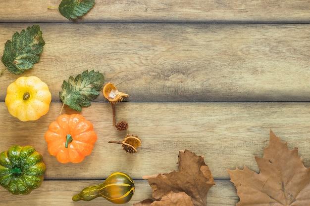 Folhas secas e legumes frescos