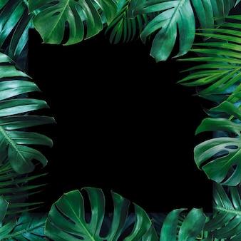 Folhas tropicais e fundo preto de papel em branco
