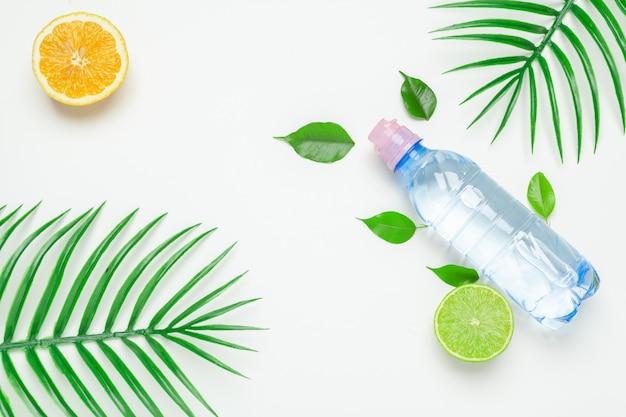 Folhas tropicais e garrafa de água. desintoxicação de água com infusão de frutas.