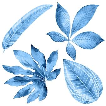 Folhas tropicais em aquarela