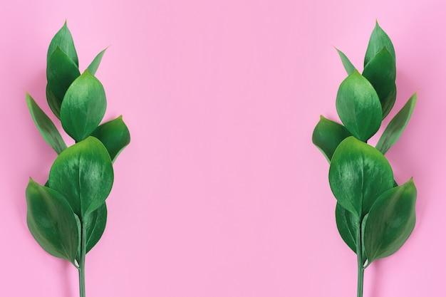 Folhas tropicais verdes em um fundo rosa