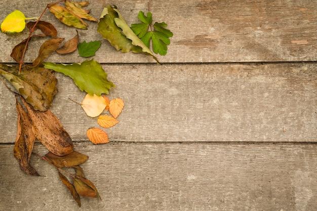 Folhas velhas no assoalho de madeira