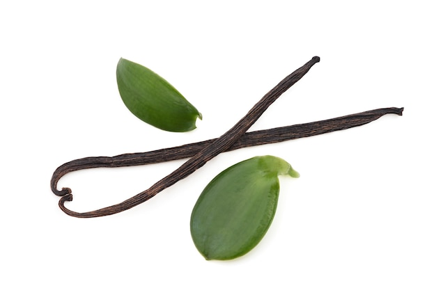 Folhas verdes baunilha e vagens secas isoladas no fundo branco com caminho de recorte. vista superior, camada plana
