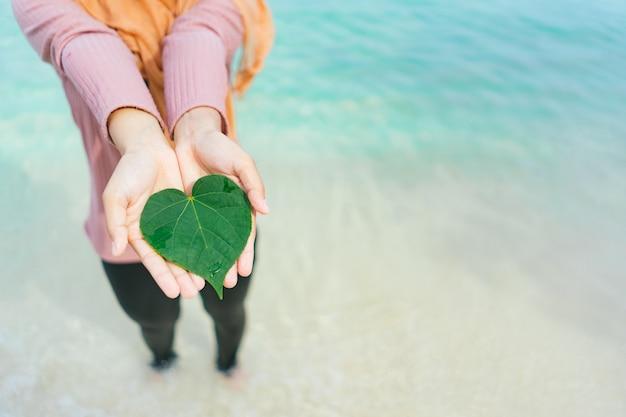 Folhas verdes com a água do oceano azul-turquesa.