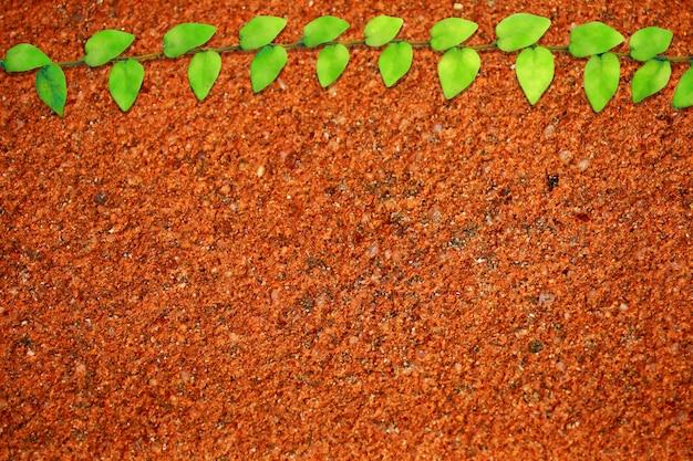 Folhas verdes de mexicano margarida natureza fronteira laranja escuro terrazzo