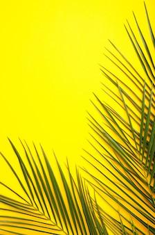 Folhas verdes de palmeira em fundo amarelo, vista superior