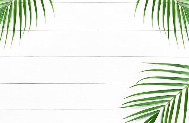 Folhas verdes de palmeira na mesa de madeira branca