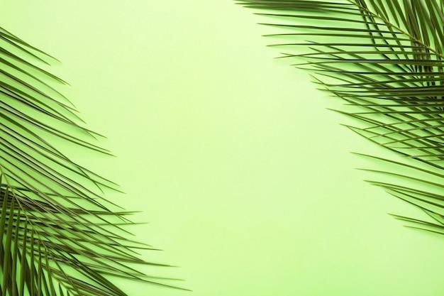 Folhas verdes de palmeira sobre fundo verde, com espaço de cópia