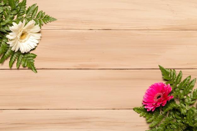 Folhas verdes de samambaia e flores coloridas na superfície de madeira