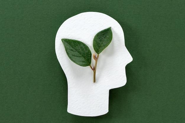 Folhas verdes dentro da cabeça, vida sustentável, pense ecologia