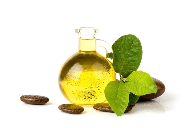 Folhas verdes do ramo goiaba ou psidium guajava e óleo isolado no fundo branco.