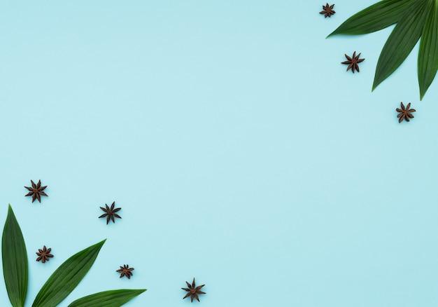 Folhas verdes e estrelas de anis. conceito de cozinha. especiarias de inverno e férias. postura plana