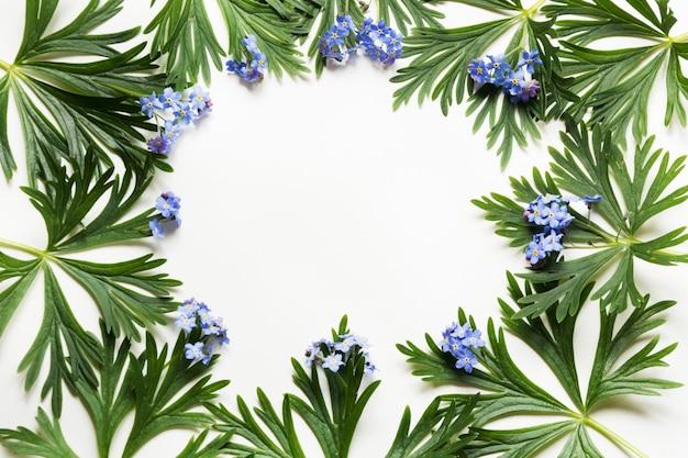 Folhas verdes e flores azuis em branco