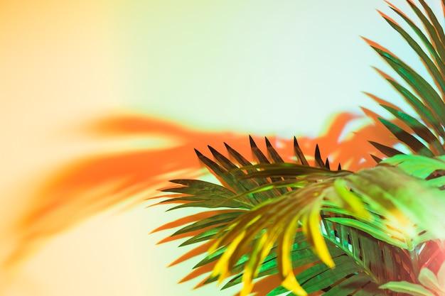Folhas verdes na luz do sol no pano de fundo amarelo