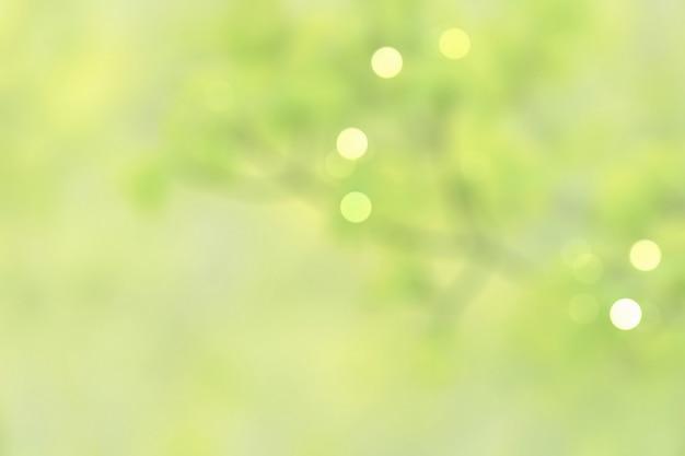 Folhas verdes pastel naturais desfocadas