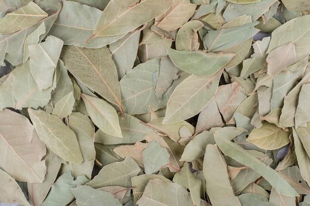 Folhas verdes secas de louro na superfície do concreto