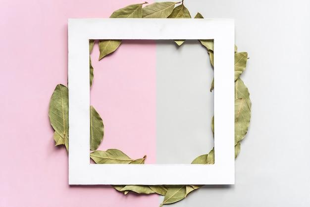 Folhas verdes secas naturais sobre fundo de cor suave nock com cópia espaço f