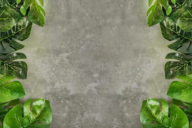 Folhas verdes sobre cimento