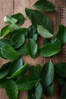 Folhas verdes sobre fundo de madeira