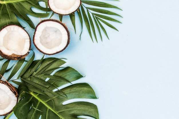 Folhas verdes tropicais, folhas de palmeira e cocos