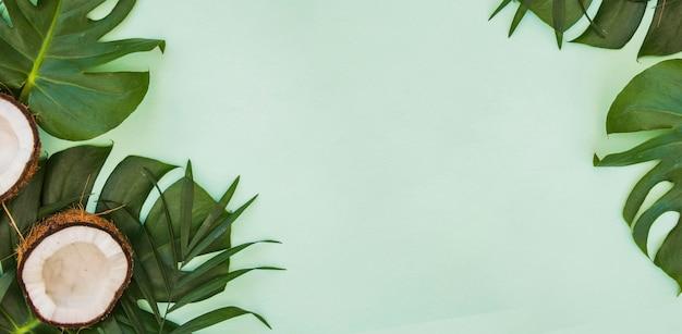 Folhas verdes tropicais. fundo de verão