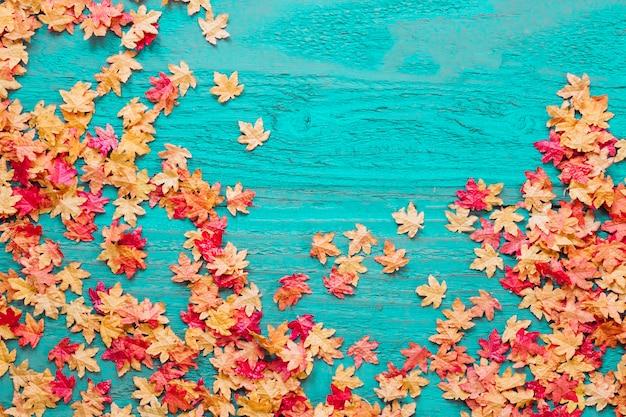Folhas vermelhas e amarelas em fundo colorido