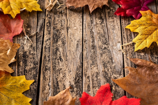 Folhas vermelhas e laranjas de outono em fundo de madeira