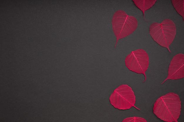 Folhas vermelhas, padrão, papel preto, fundo
