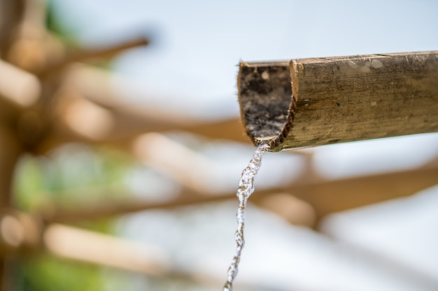 Fonte de bambu com água