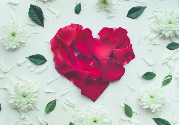 Forma de coração feita de rosa com pétalas de flores em fundo branco.